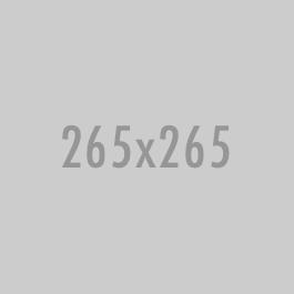 265×265